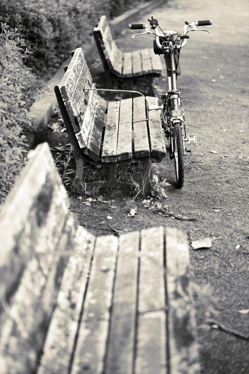 夏のベンチ
