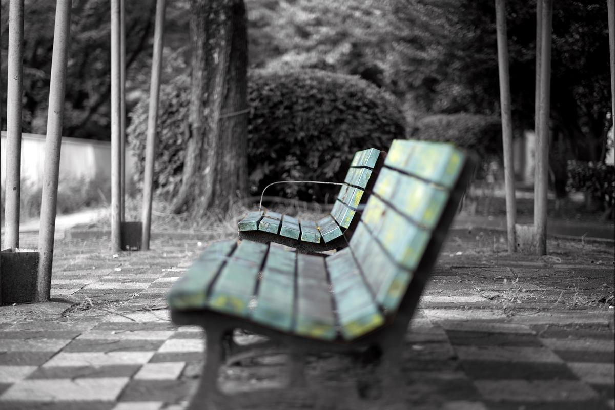 緑のあるベンチ